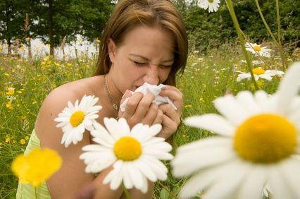 Аллергия на цветочную пыльцу - одна из самых распространённых
