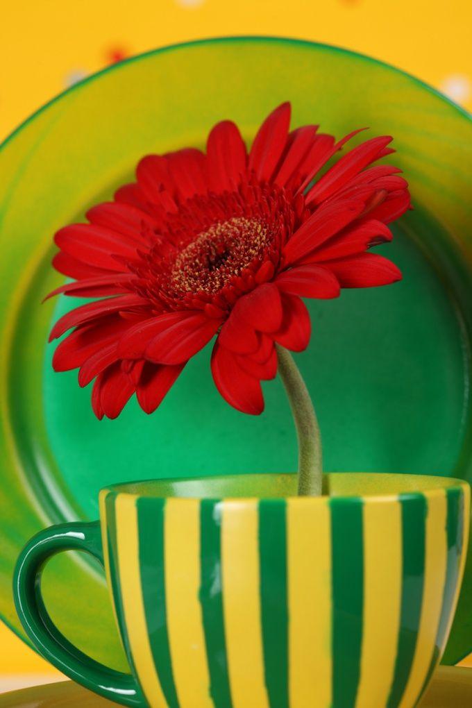 Как красить цветы