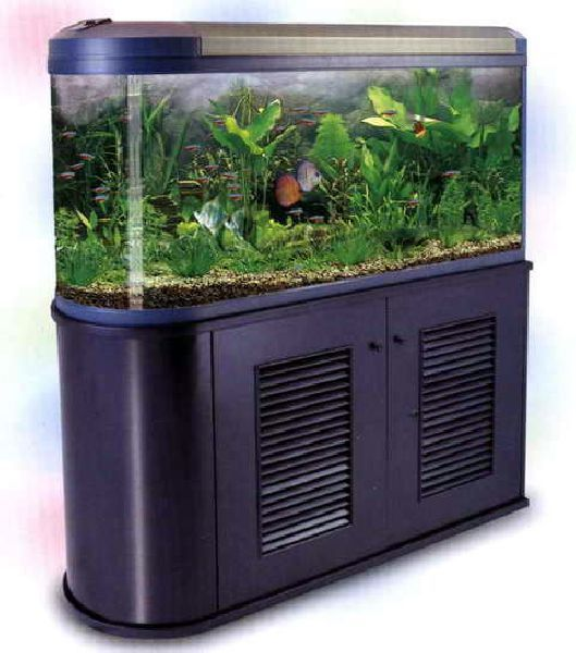 Как менять воду в аквариуме