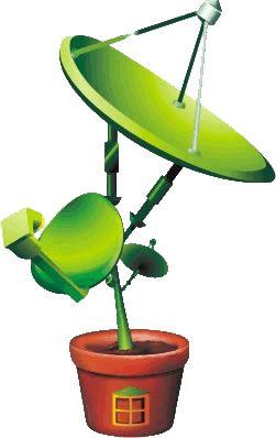 Как можно просматривать спутниковые каналы