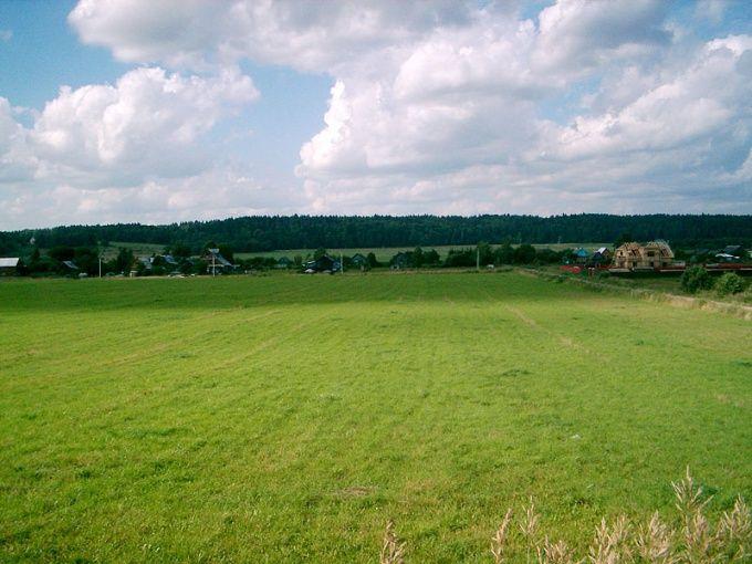 Как оформить в собственность участок