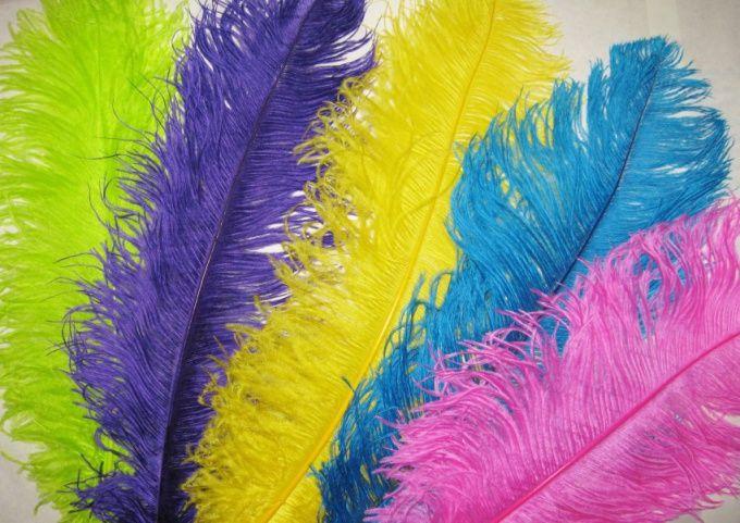 Как покрасить перья
