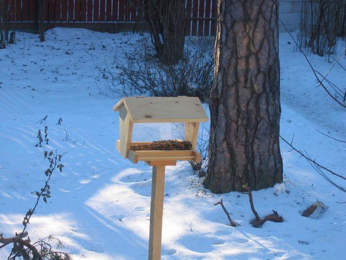 Как построить кормушку для птиц