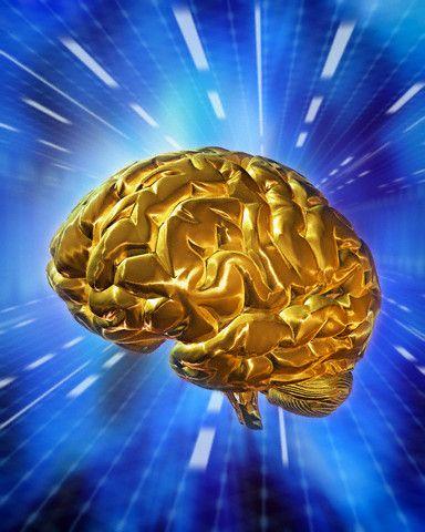 Как развить феноменальную память и скорость