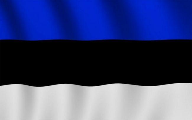 Как сделать визу в эстонию