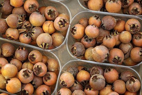 Мушмула кавказская – необычный фрукт