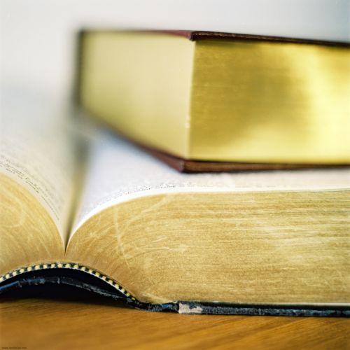 Хорошая книга одновременно и развлекает, и обучает читателя