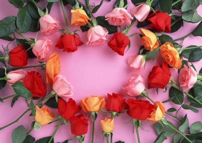 Как сохранить розы надолго