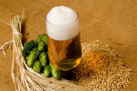 Варим домашнее пиво: рецепты пива